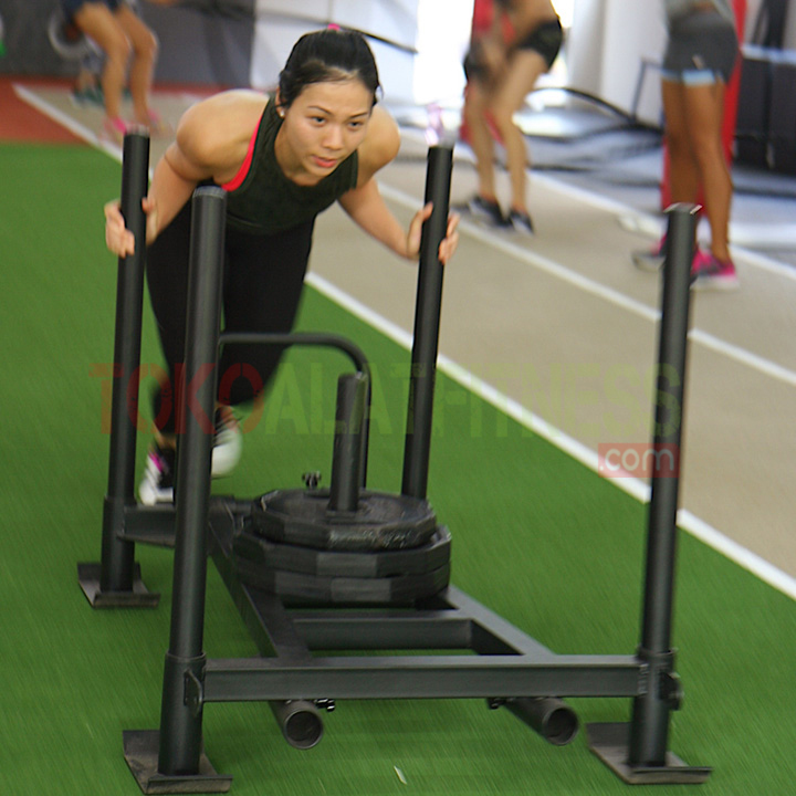 speed fitness wtm - Weight Sled Fitness Body Gym with 3 Iron Plate 10kg (25% off)